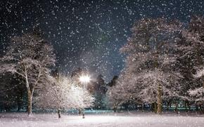 tarde, Luz fonorya, del ao pasado, la cada de nieve