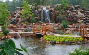 paesaggio, marciapiede, ponte, stagno, ninfea, pioggia, pietre, cascata, alberi, fiori