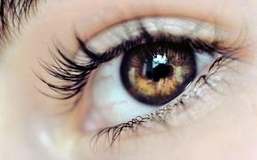 глаз,  взгляд,  макияж