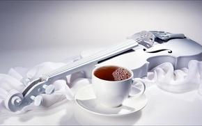 dairy, melody, Tea