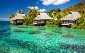 sea, sky, recreation, paradise