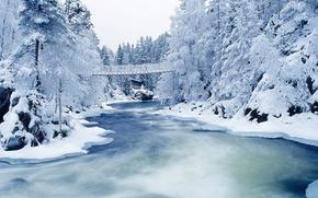 зима, снег, деревья, иней, река, мост