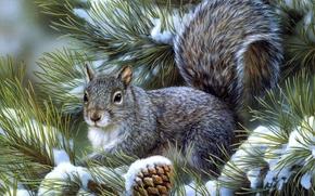 белка,  ветки,  елка,  снег,  шишки,  зима