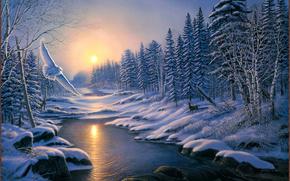 性质, 冬季, 河, 雪, 漂移, 太阳, 猫头鹰, 鸟