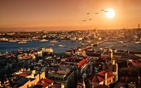 citt, edificio, architettura, tramonto, sera