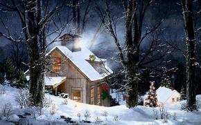 природа,  зима,  лес,  дом