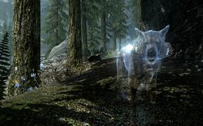 Skyrim,  скайрим,  волк,  деревья,  папоротник,  цветы,  горы,  дух