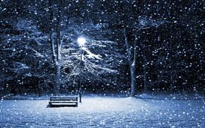 invierno, jardn, linterna