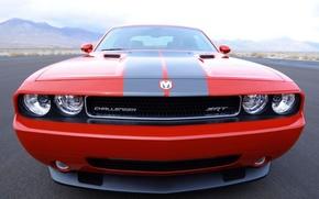 Dodge, Challenger, SRT, cars, machinery, Car