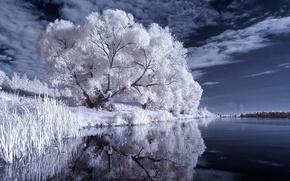 ro, Los rboles, cielo, las nubes