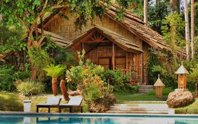 casa, alberi, acqua, piscina, palma