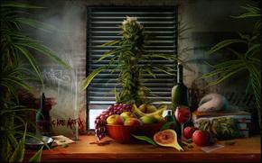 table, still life, plate, apples, banana, grapes, pears, wine, bottle, grass, bush, Books, window, Venetian blinds, package, rat
