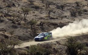 ралли,  пыль,  крис,  аткинсон,  Subaru