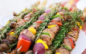 shashlik, meat, food, delicious, vegetables