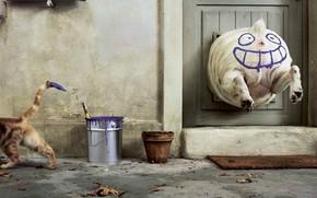 краска, собака, кошка, юмор
