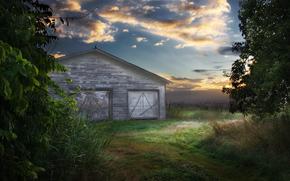 barn, field, sky, ворона