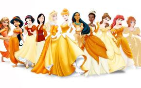 Principesse Disney, disney, Principessa, Rapunzel, gelsomino, Ariel, Cenerentola, Bella addormentata nel bosco, Biancaneve, pakohontas, Tiana, bella, Gisele, Mulan