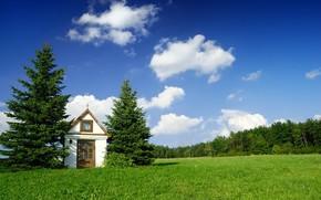 домик, елки, небо