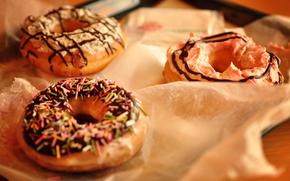 разное,  пончики,  еда,  завтрак,  пища,  крошка,  крем,  шоколад,  сдоба