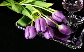 Flowers, Tulips, tray, goblet, wine