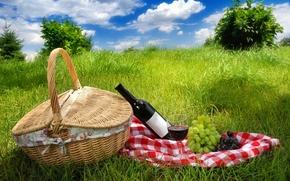 natura, paesaggio, cielo, nuvole, erba, primavera, guasto, uva, picnic