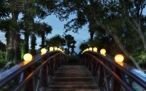 мост,  вечер,  пальмы,  фонари