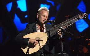 Pungiglione, concerto, strumento musicale, stato d'animo, Cantante, Musicista, Compositore, attore