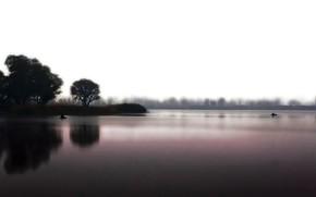 природа, озеро, вода, тишина, настроение