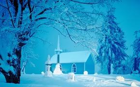 neve, loggia, Alberi, chiesa, inverno