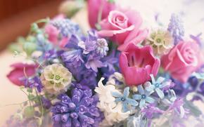 muitos, Flores, composio, buqu