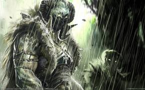 Art, Freaks, rain, Orcs, armor