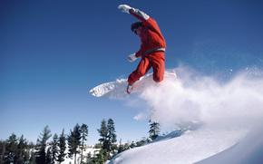 nieve, tabla de snowboard, montaa, de los bosques.