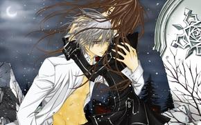 Knight Vampire, moon, night, snow, wind, plate, embrace