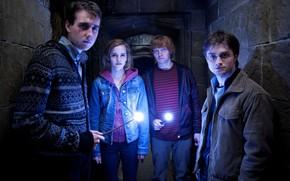 Wizards, harry potter