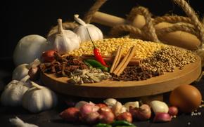 spices, Spices, cinnamon, garlic, pepper, carnation