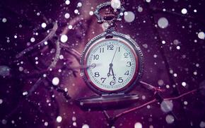 regarder, temps, lilas
