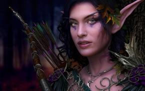 девушка,  эльф,  эльфийка,  уши,  украшения,  лук,  стрелы