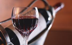 goblet, red wine, bottle in the holder