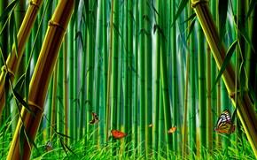bamboo, grass, Butterflies