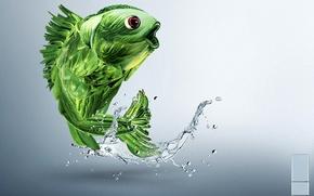 Gold, small fish, of, green, vegetables, kreatifchik