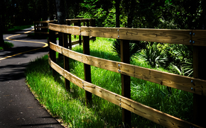 дорога, лес, забор