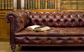 style, old man, Antiques, sofa, library, Books, book
