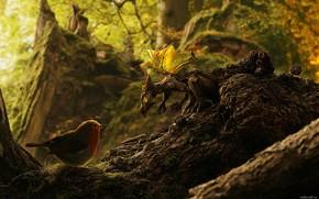 foresta, uccellino, drago