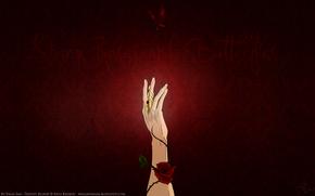рука, роза, шипы, бабочка