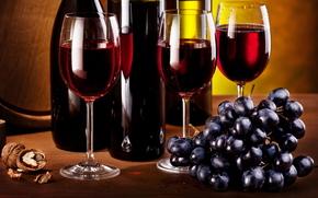 vino, gafas, Botella, uvas, cepillar, grupo, tuerca