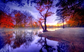 natura, autunno, silenzio