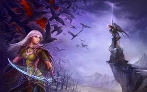 иллюстрация к книге,  девушка,  дракон,  меч,  сабля,  оружие,  замок,  птицы,  эльфийка,  эльф