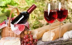 vino, uva, formaggio, pane, calici, picnic, Francia