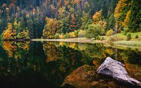 озеро,  лес,  камень,  осень