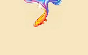 золотая рыбка, water, плавники